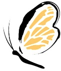 Little_Wings_Favicon_Apple_iPad_Retina